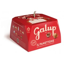 Panettone tradizionale Galup 750 gr