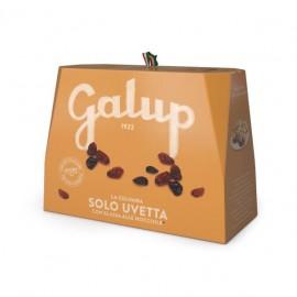 Colomba Senza Canditi Galup 750 gr