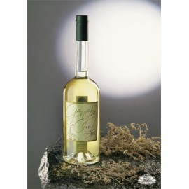 Il genepy Antica Distilleria Quaglia 70 cl