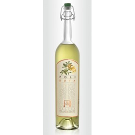 Grappa con Ruta Jacopo Poli 70 cl