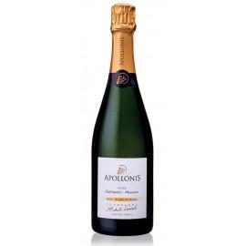 Champagne brut Authentic Meunier Blanc De Noirs 75 cl - Apollonis